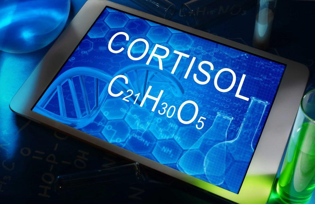 Cortisol: zó versla je deze gezondheids- en prestatiesloopkogel!
